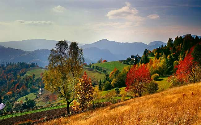 autumn landscapes - image gallery