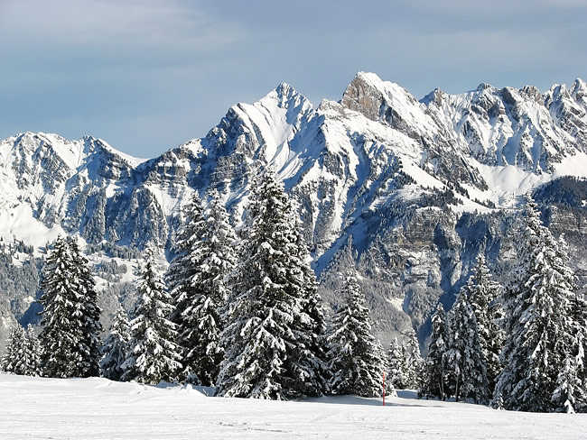 Alps  - pictures