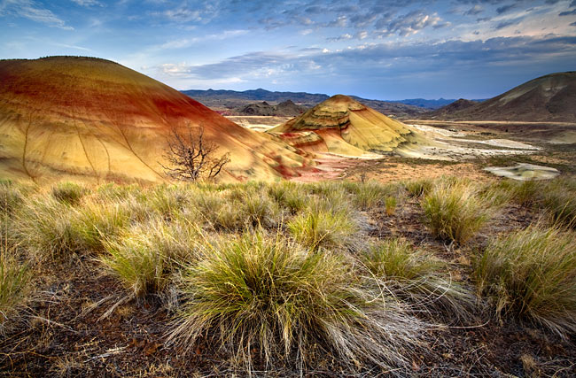 Painted Hills  - pictures